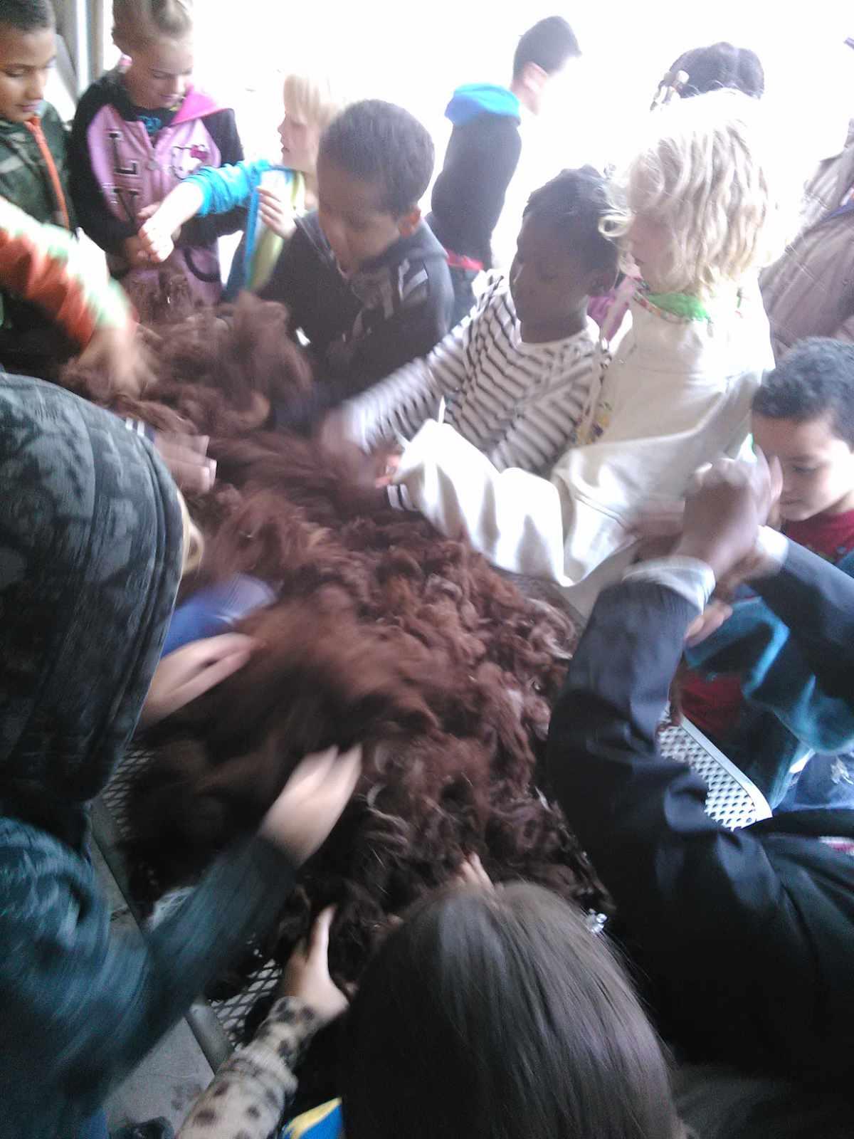 Kids and fleece