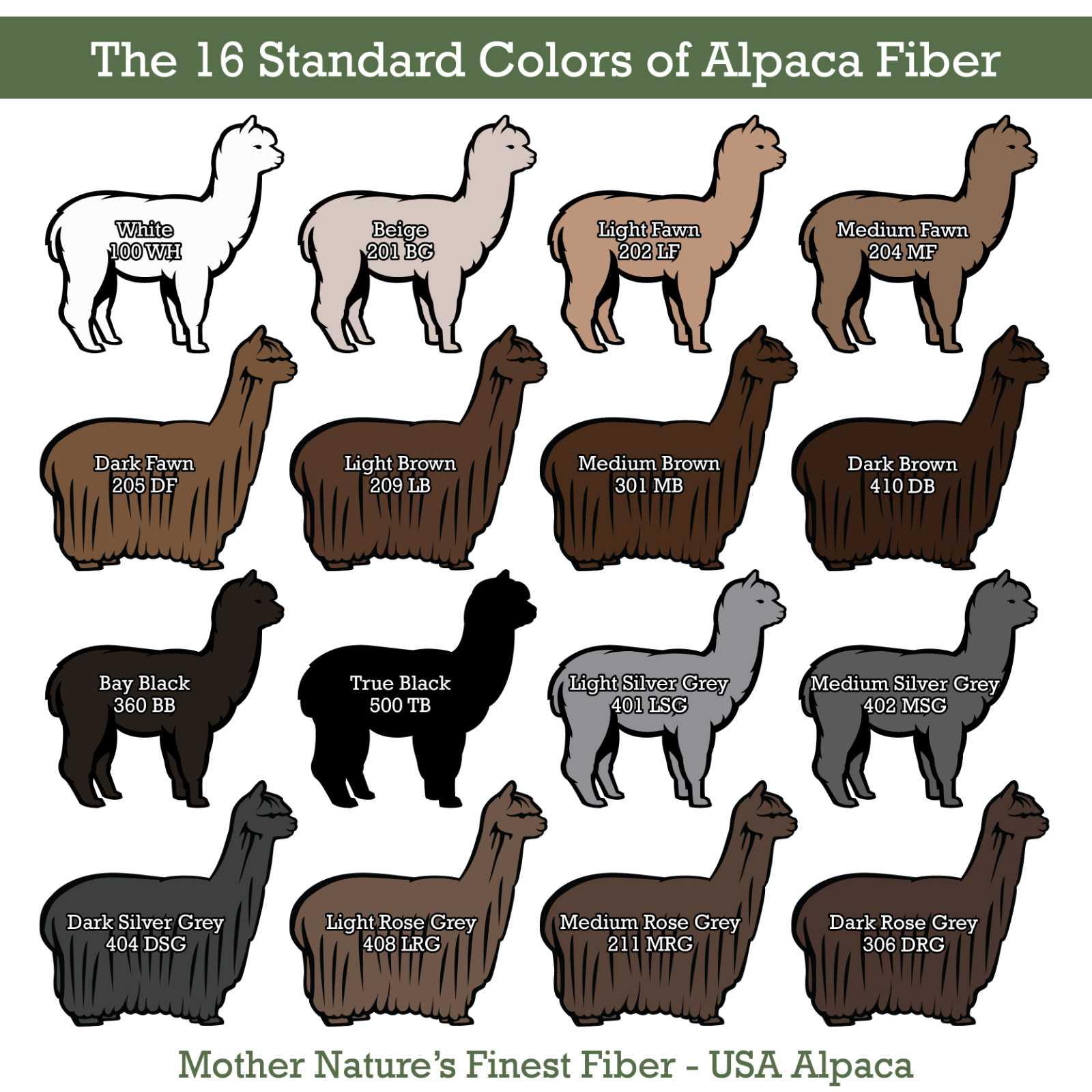 Alpaca Fiber Color Chart